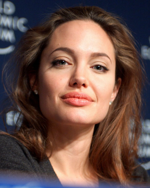 Angelina Jolie and solar power in California
